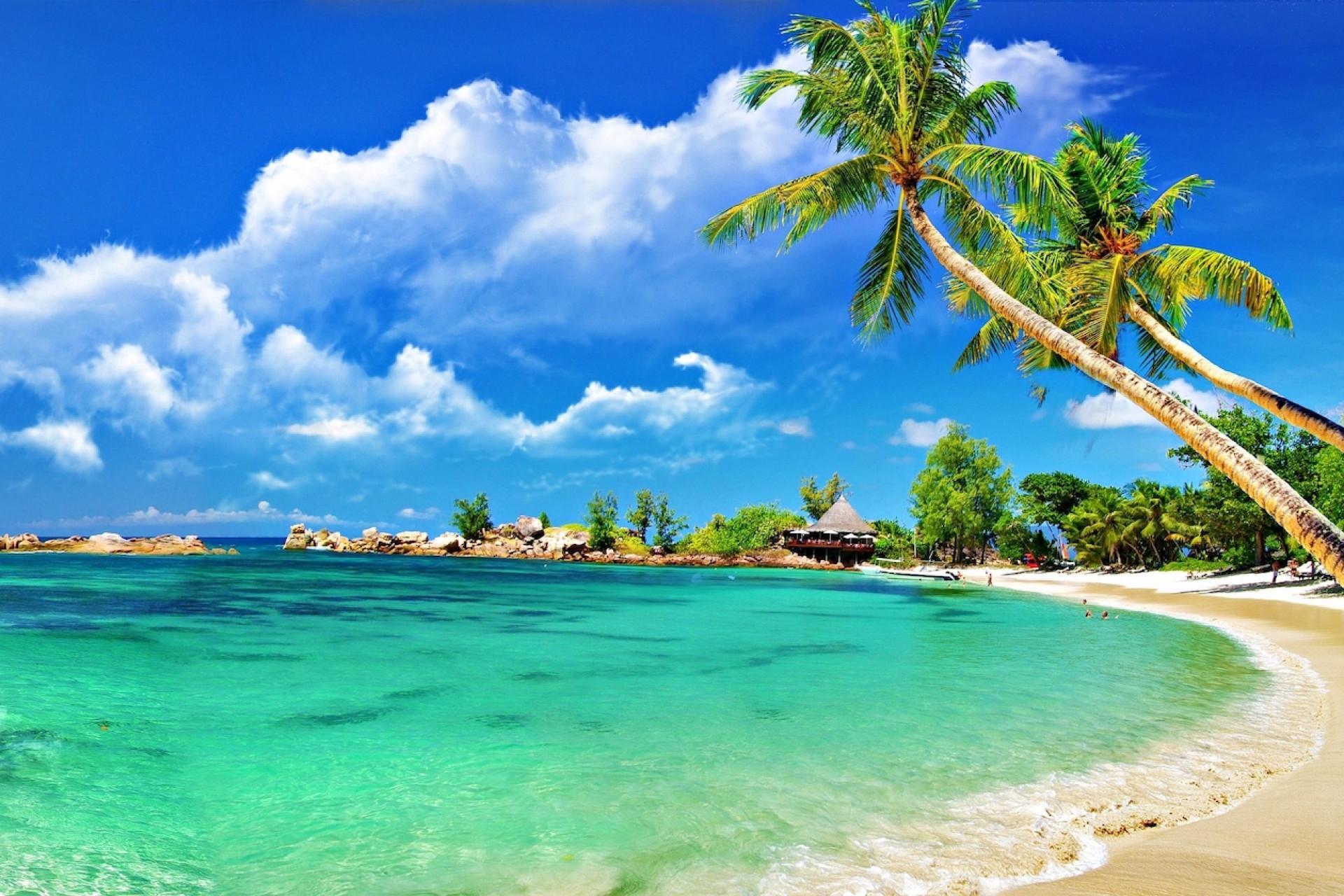 Charter Destination: Caribbean
